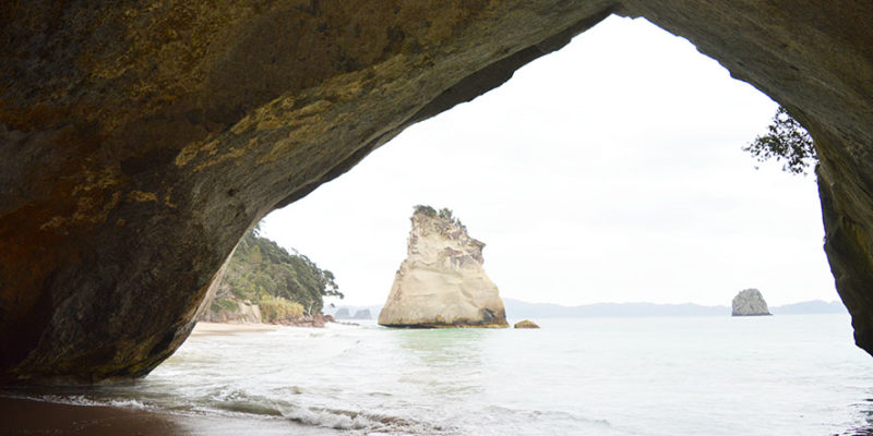 hahei cathedral cove (33)