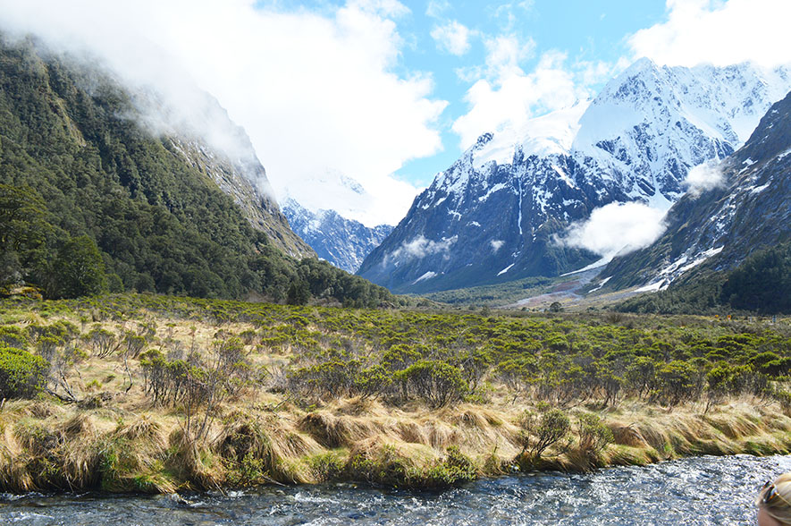 Fiordland National Park (5)