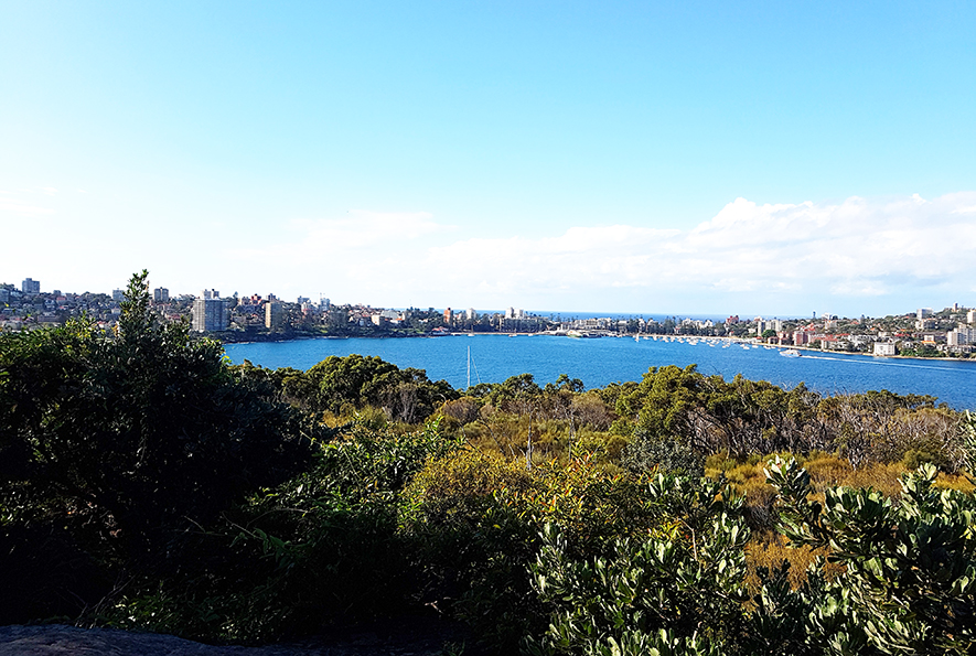 LTE Spit Bridge to Manly Walk