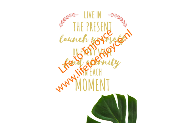 Quote Live in the Present